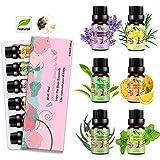 Aceites Esenciales para Humidificador Aceite Esencial 100% Naturales Puro Aromaterapia Esencias para Humidificador-6x10ml Set