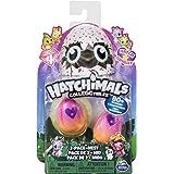 Hatchimals 6043953 - CollEGGtibles 2 Pack + Nest S4