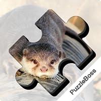 Jigsaw Puzzles: Wildlife