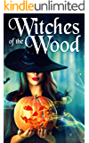 Witches of The Wood: A Cozy Witch Mystery (English Edition)