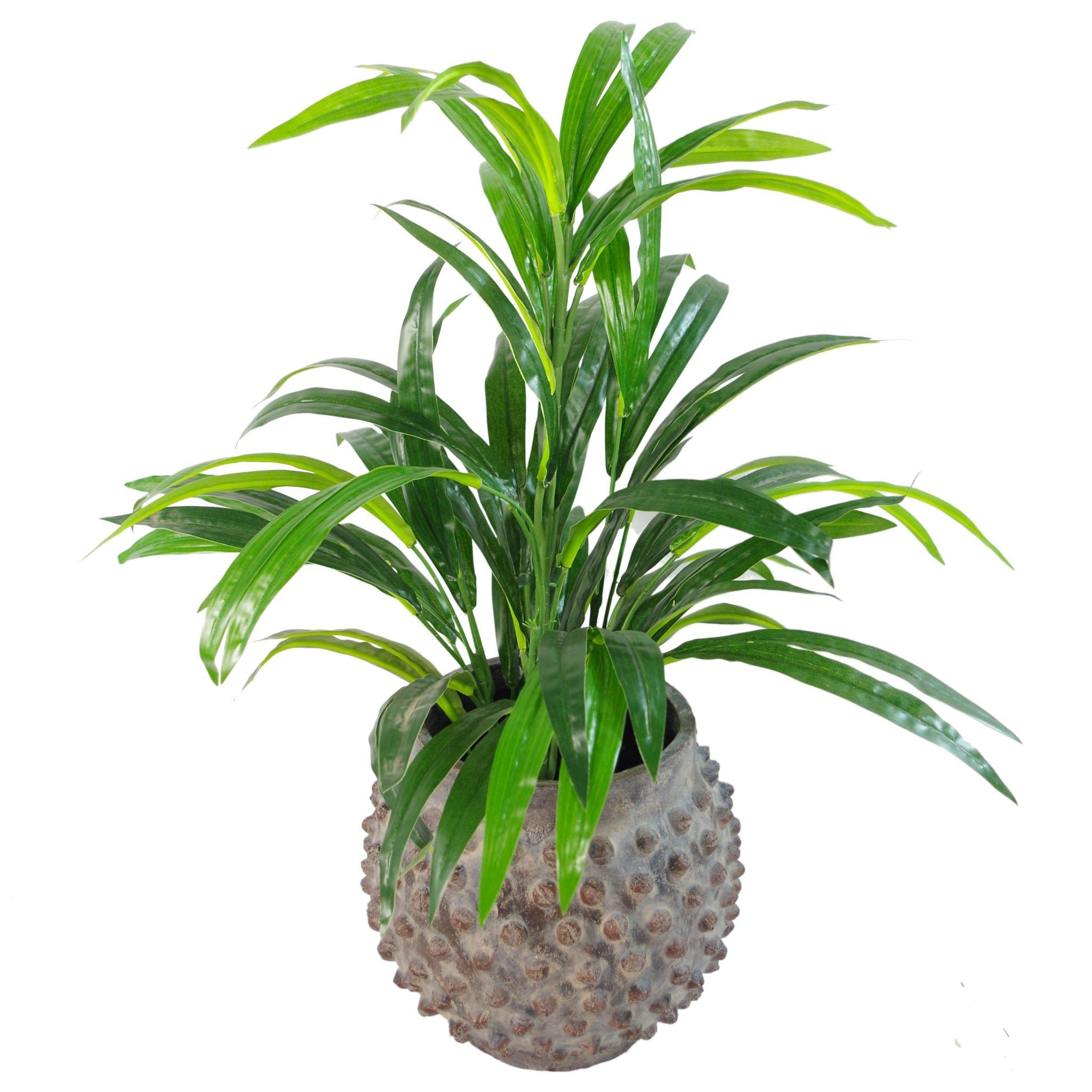 Leaf Planta Artificial de 65 cm con Hojas Grandes de bambú, 65cm