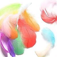 FORMIZON Plumes Colorées, 600 Pcs Coloré Nature Plumes d'oie, 8-12cm Naturel Plume Décoration pour DIY Arts Crafts…