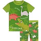 Harry Bear Bañador de Dos Piezas para niño Dinosaurios