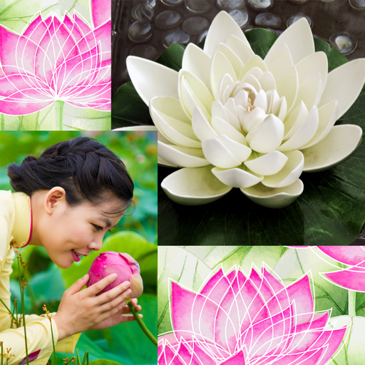 Lotus Collage Fotoeditor -