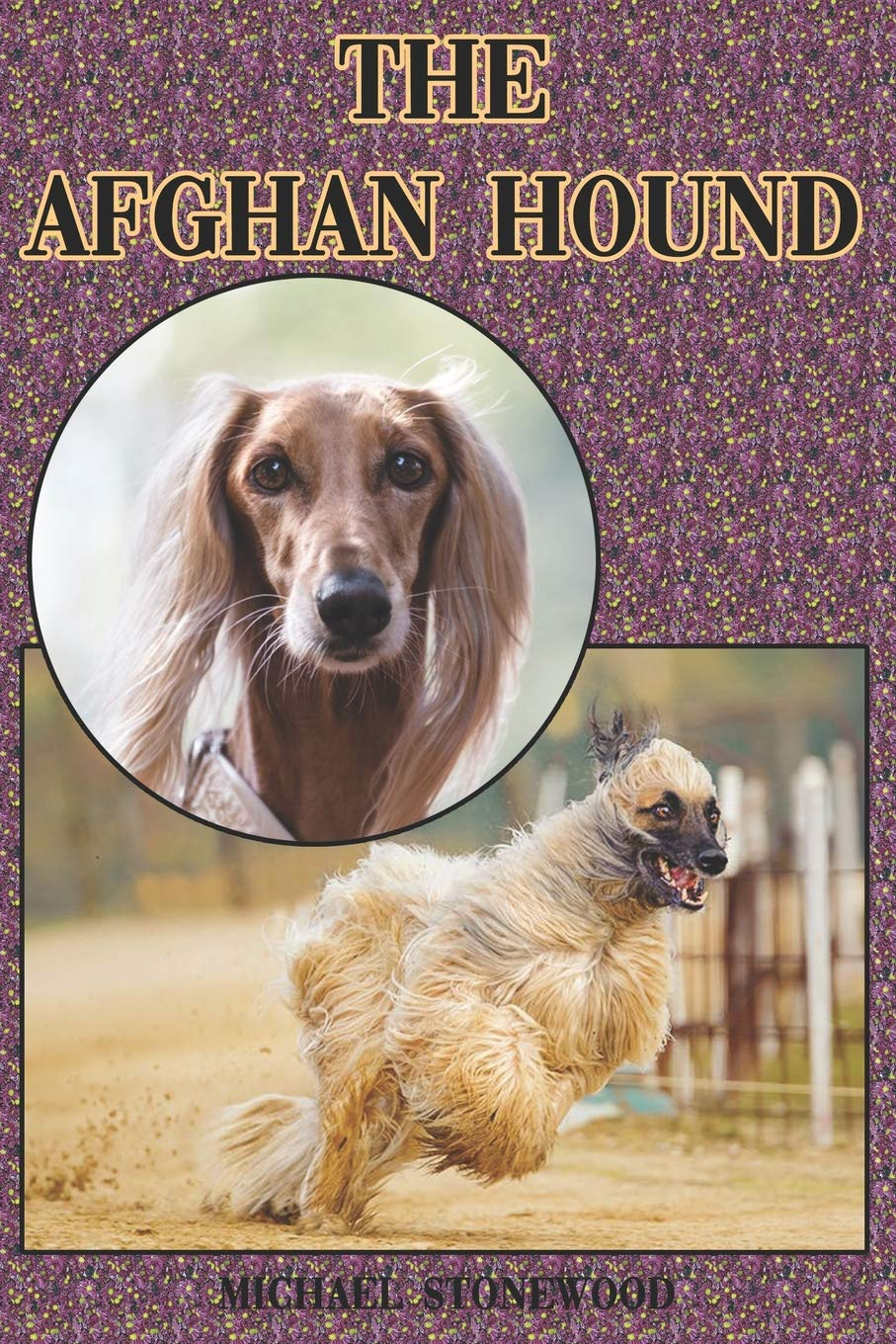 The Afghan Hound: A Complete and Comprehensive Beginners Guide to: Buying, Owning, Health, Grooming, Training, Obedience…