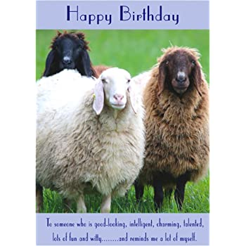 Sheep Birthday Card Amazon Co Uk Office Products