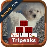 TriPeaks Puppies