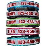 Collare per Cani Riflettente Personalizzato, Numero di Telefono con Nome del Cane Ricamato Personalizzato con Collare in 5 Co