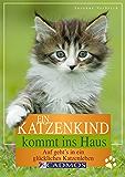 Ein Katzenkind kommt ins Haus: Auf geht's in ein glückliches Katzenleben