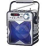 Trevi XFEST XF 100 Altoparlante Amplificato Portatile con Mp3, USB, Bluetooth e Batteria Integrata, Karaoke Party Speaker con Microfono ad Archetto