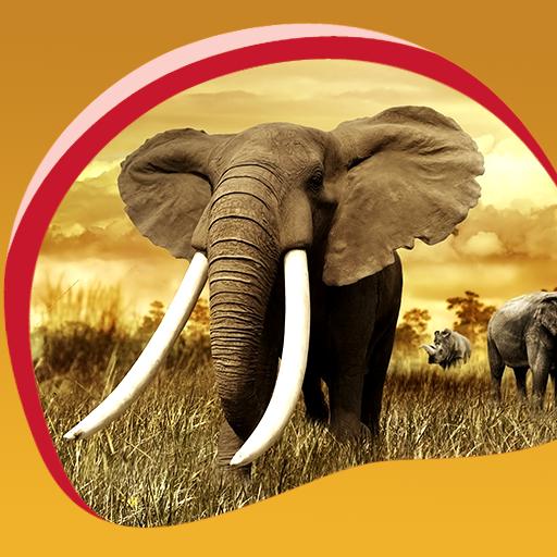 Elefanten Live Wallpapers - Weg Wallpaper