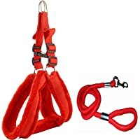 Skora Nylon Padded Red Adjustable Dog Harness & Dog Leash Rope 1.25 Inch For Large Pet