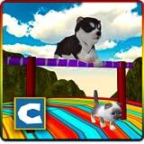 Stunts Cat Dog Simulator 3D
