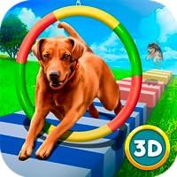 Pet Dog Run: Training Show