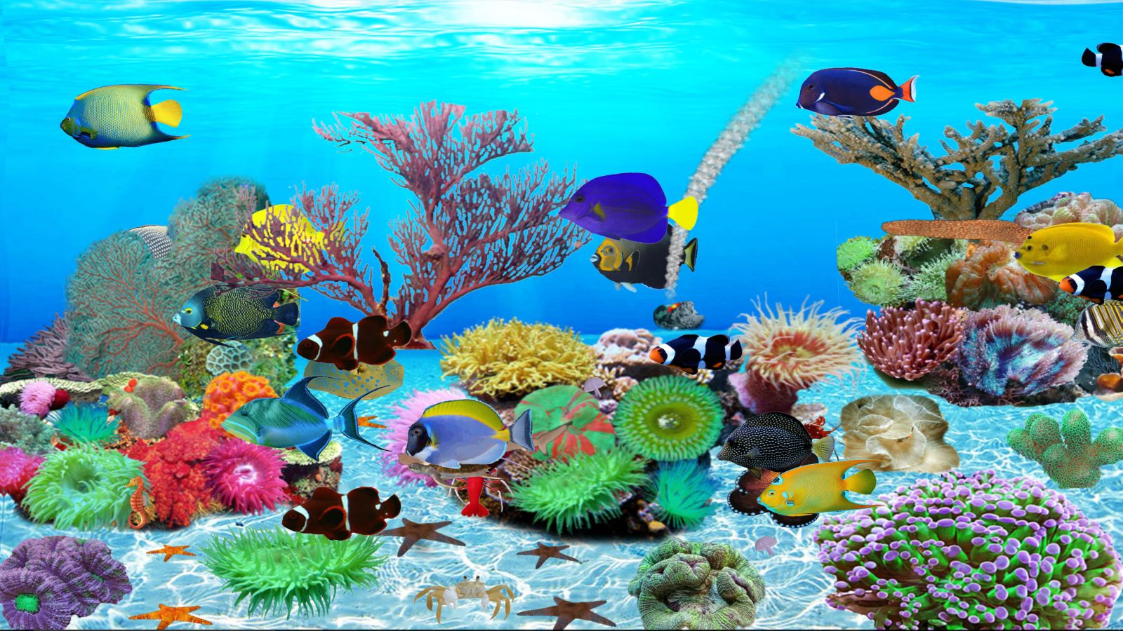 Unterwasserwelt gebraucht kaufen nur 3 st bis 75 g nstiger for Aquarium gebraucht