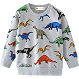 MOLYHUA Sudadera para niños con diseño de dinosaurio de manga larga informal de algodón