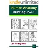 Human Anatomy Drawing (Part-1): Art for beginner
