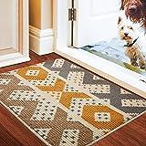 Color&Geometry Felpudo de Entrada, Interior Alfombra Antideslizante, Tapete para Puerta Lavable a Máquina, Absorbente para Pa