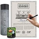 happylandgifts® Edition 2020-1m² echter Regenwald in Costa-Rica als nachhaltiges Geschenk I Besitzurkunde mit Wunschname zum