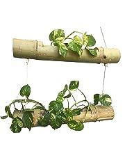 NAOE Bamboo 2 Steps Hanging Planter (Brown)