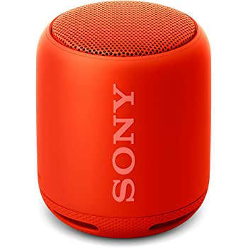Sony SRS-XB10 Altoparlante Wireless Portatile, Extra Bass, Bluetooth, NFC, Resistente all'Acqua IPX5, Rosso