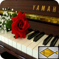 Piano entspannende Musik