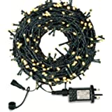 Outdoor Fairy Lights Mains Powered, LED Fairy Lights Outdoor, Shineled 30M 300LEDs 8 Modes Garden Decorative Lights for Chris