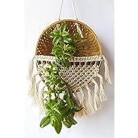Zippy Flora™ Macrame Basket,Plant Hanger,Wall DÉCOR,Garden Pot (ZF150558)