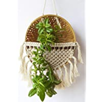 Zippy Flora Macrame Basket Plant Hanger,Diameter-9 Inches (ZF150934)