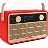 Nordmende Transita 120 IR draagbare internetradio (DAB+ radio, FM, WLAN, 24 uur accu, wekker, sleeptimer, hoofdtelefoonaanslu