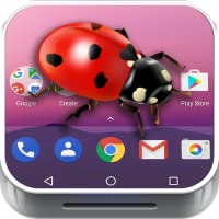 Ladybug on Phone joke