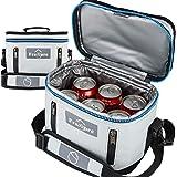 Freshore sac à lunch isolé fourre-tout boîte mince petits sacs pour les femmes/hommes 丨 Conteneur de rangement compact conten