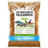 Vers de farine séchés • 1 kg (équivalent à 6,5 litres). Nourriture de qualité supérieure - Un snack sain et naturel pour les