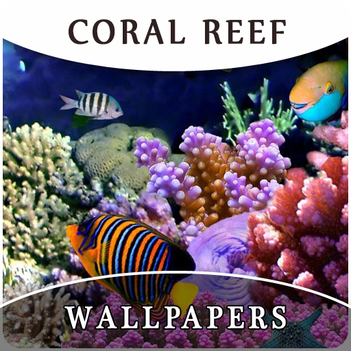 Coral Reef Wallpapers And Background