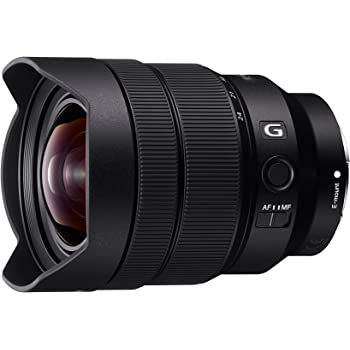 Sony SEL1224G FE 12-24 mm F4 G Ultra-Wide-Angle Zoom Lens - Black