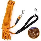 PETTOM Longe pour Chien 15m, Longe Corde Dressage Réfléchissante, Longe d'attache Nylon pour Chien Petit/Moyen/Grand - Orange