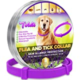 toldi Tratamiento-de-pulgas-para-Perros, Collar-antipulgas-Perros Ajustable, 8 Meses de protección-contra-pulgas-y-garrapatas