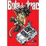 Bola de Drac Definitiva nº 01/34 (Manga Shonen)