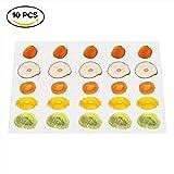 GCSJ Pack de 10 Anti-adhésif Tapis de silicone, pour Déshydrateur Alimentaire, 38 * 28cm, Flexible, Lavable et Réutilisable