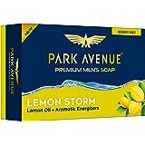 Park Avenue Storm Soap for Men, 125g