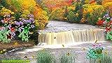Herbst Wasserfall Bildschirmschoner [Download]