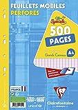 ClaireFontaine 11791C - Un é‰tui carton de 500 pages Feuillets Mobiles perforés 21x29,7 cm 90g grands carreaux