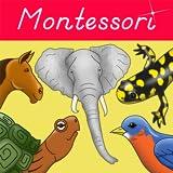 Parts of Animals (Vertebrates) - Montessori Approach to Zoology