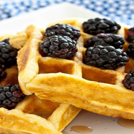 Waffle Recipes - Scrumptious Chocolate Belgian