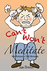 Can't Meditate, Won't Meditate: Mindfulness in Odd Moments Kindle Edition