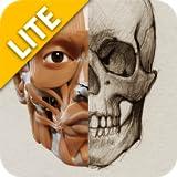3D-Anatomie für den Künstler - Lite