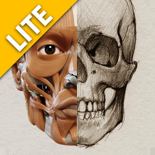 3D-Anatomie für den Künstler - Lite (Künstler Körper)