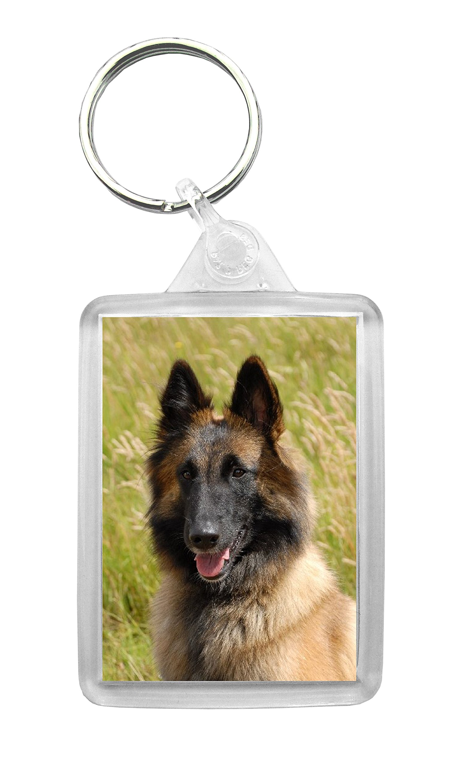 Belgian Shepherd Dog (Tervuren) Photo Keyring Key Chain Keyfob Lovely Novelty Gift Idea