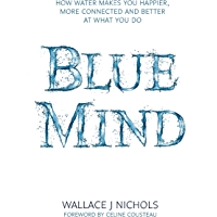 Blue Mind: How Water Makes You Happier, More Connected and Better at What You Do (English Edition)
