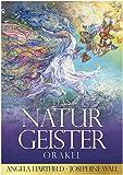 dsnetz Naturgeister-Orakel Orakelkarten 50 Karten Begleitbuch | Ritual Altar Zubehör | Esoterik Geschenke günstig online kaufen
